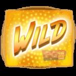 สัญลักษณ์ Wild Hip Hop Panda