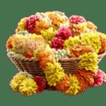 สัญลักษณ์ ดอกไม้ Ganesha Gold