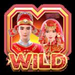 สัญลักษณ์ Wild Double Fortune