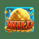 สัญลักษณ์ Wild Dragon Hatch